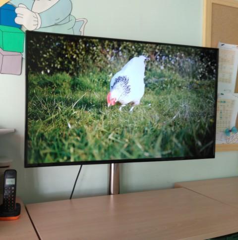 El concepto de multimedia en las aulas